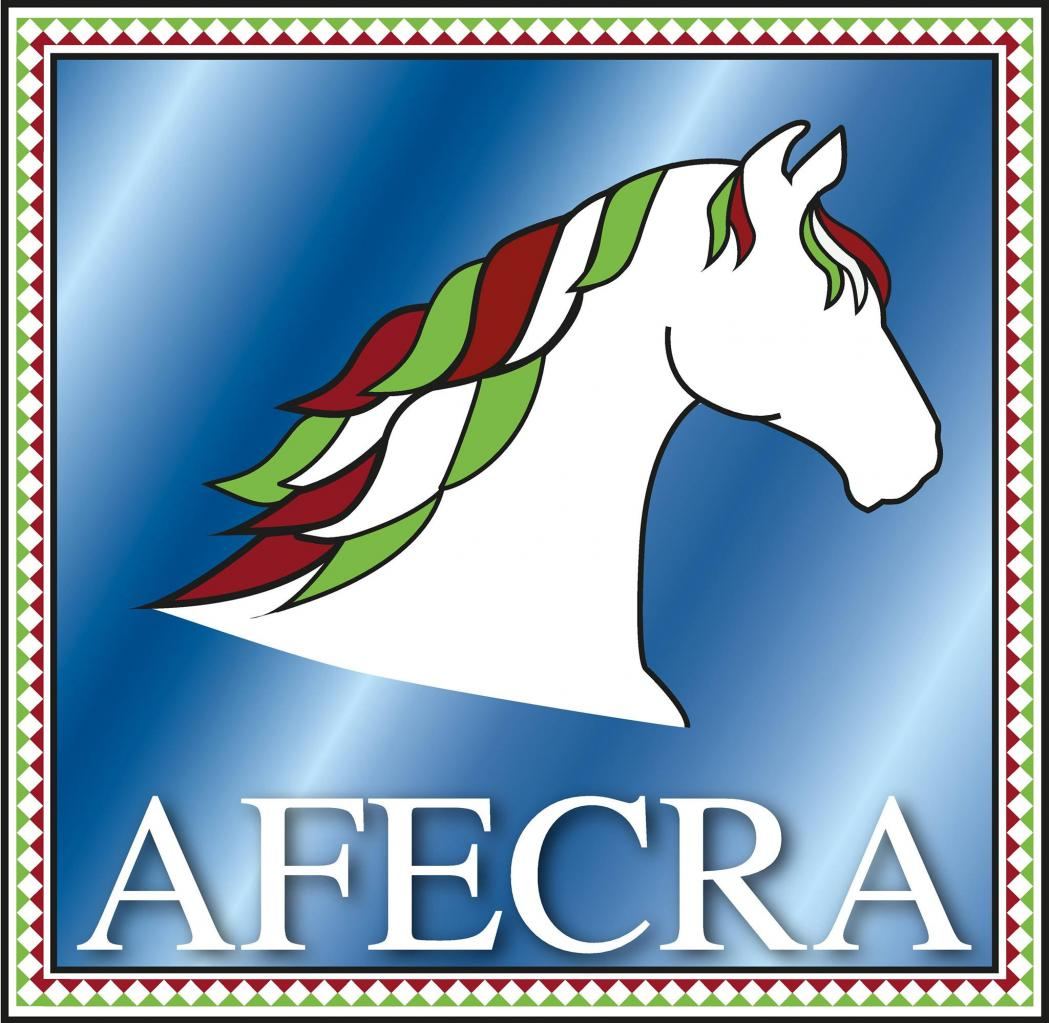 Site officiel de l'association du cheval aztèque